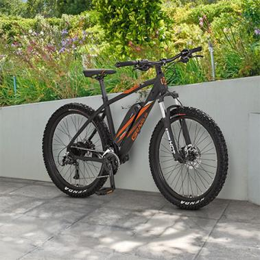Prophete E-Mountainbike